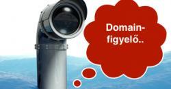 domain figyelő